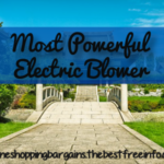 Most Powerful Electric Blower